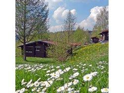 Bild zur kostenlos inserierten Ferienunterkunft Ferienhausanlage Am Sommerberg.