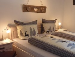Bild zur kostenlos inserierten Ferienunterkunft Ferienwohnung Auenwiese.