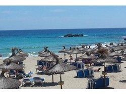 Bild zur kostenlos inserierten Ferienunterkunft TOP - Ferienwohnung in Cala Ratjada.
