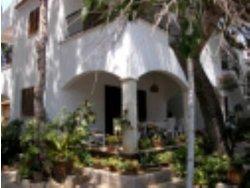 Bild zur kostenlos inserierten Ferienunterkunft Cala Ratjada B981.