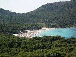 Bild zur kostenlos inserierten Ferienunterkunft Cala Ratjada B031.