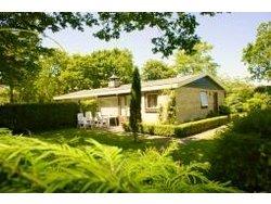 Bild zur kostenlos inserierten Ferienunterkunft Bungalow Dünenhaus.