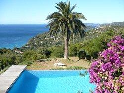 Bild zur kostenlos inserierten Ferienunterkunft Les Palmiers.