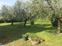 Bild zur kostenlos inserierten Ferienunterkunft Villa Gianna.